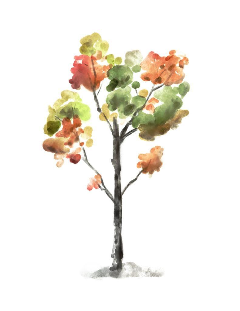 Tree Still Life Watercolor SketchBox Procreate Free Brush Pack Sample